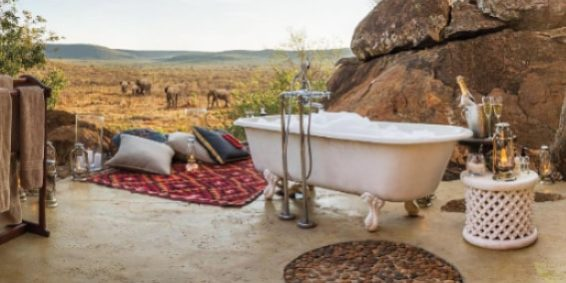 exposed to the elements and what could be more magical than a soak in the african bush with wildlife frequently passing by to provide the ultimate bath